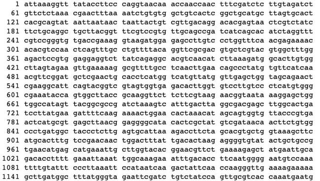 genoma del covid-19, sequenziamento