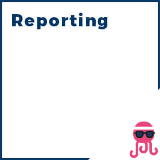 sez.1-reporting